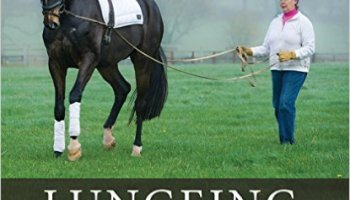 101 Schooling Exercises: For Horse & rider