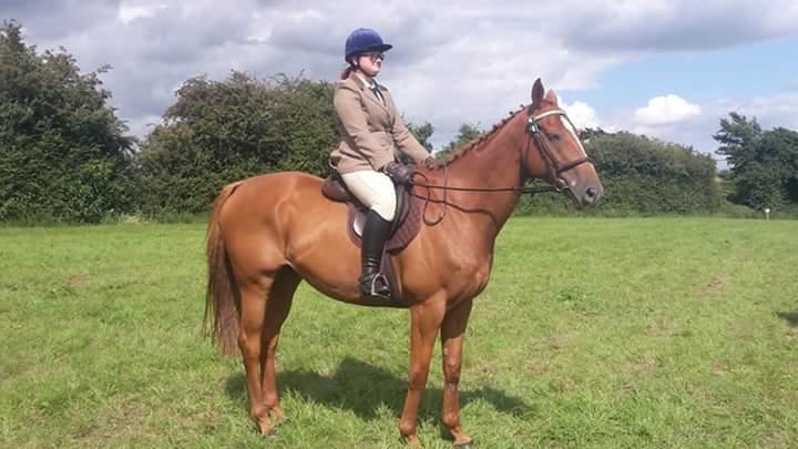 scottie ridden showing