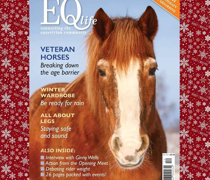 Not Own Photo, Owned by EQ Life magazine.