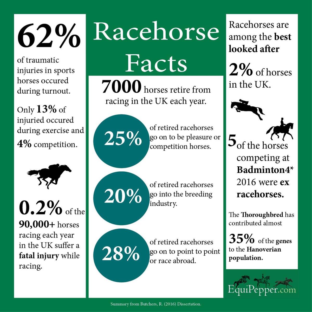 racing infographic
