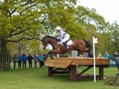 ex racehorse at badminton