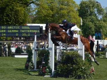 Arctic Soul Baminton (burghley horse trials)