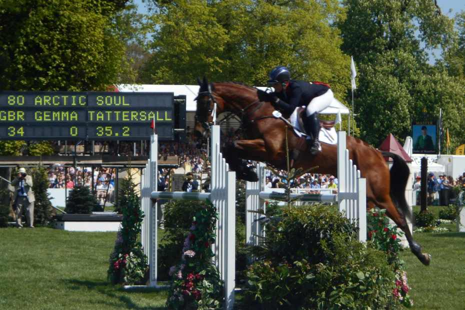 Arctic Soul Baminton (burghley horse trials) buying an ex racehorse