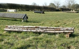 cross country log pile - credit MKEC
