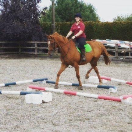 scottie demonstrating my favorite polework exercise, top posts