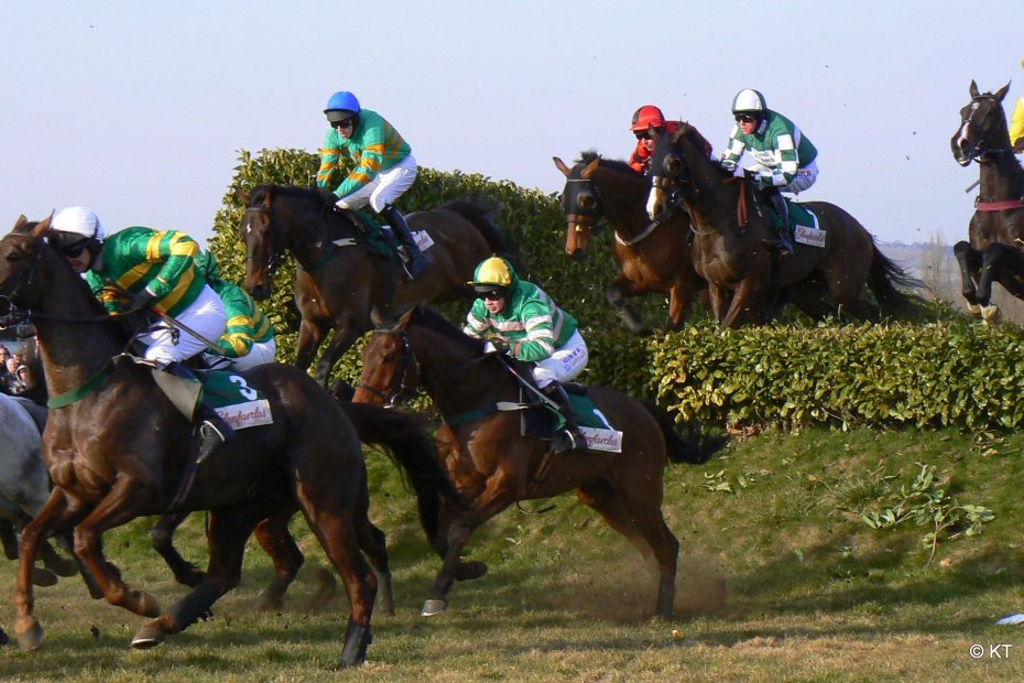 Cross Country chase at Cheltenham festival 2010. Credit Carine06 on Flickr