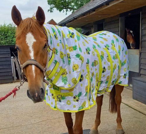 Ponyo Happy Pineapple fly rug