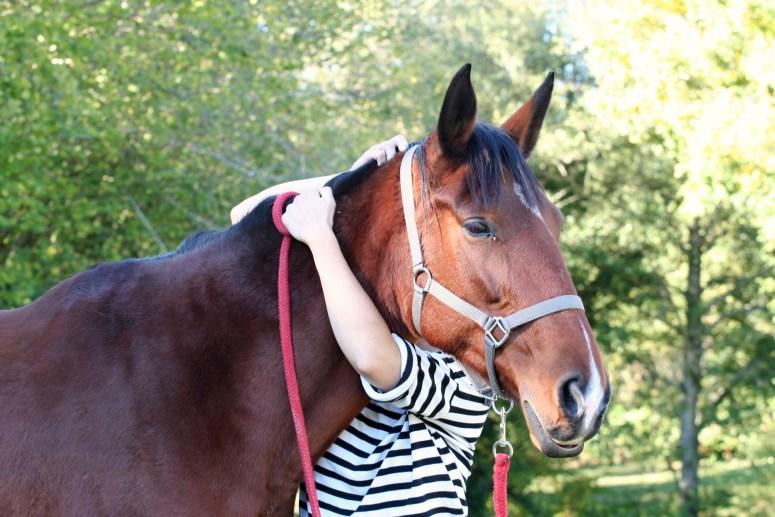 Aimez vos chevaux
