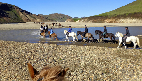 Ishestar Iceland Horse Riding Vacations Amp Riding Tours Equitrekking