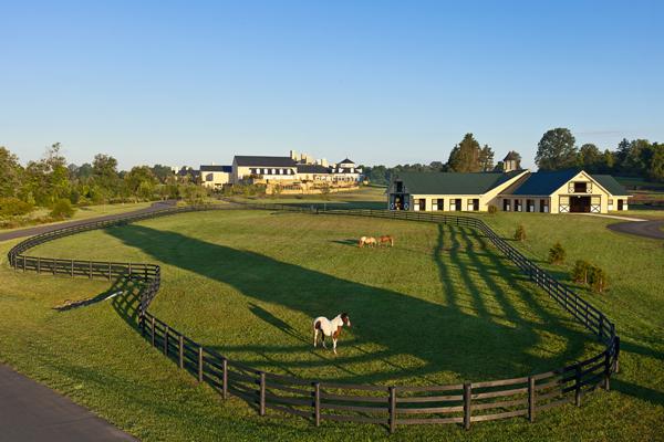 A Luxury Equestrian Vacation At Salamander Resort Amp Spa
