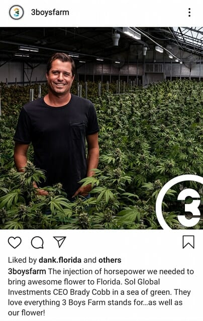 3 boys farm, sol global, florida, cannabis, organic, MSO, andy defrancesco