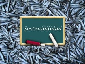EQUO celebra la decisión del Parlamento europeo de apoyar la pesca sostenible