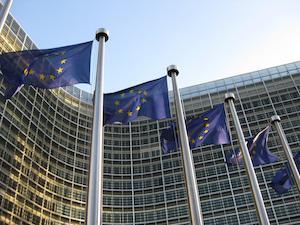 DieselGate: Los Verdes Europeos exigimos una investigación independiente y transparente a nivel europeo