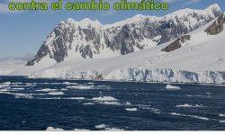 Sigue aquí la COP 23