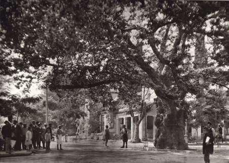 017 - Αθήνα - Κηφισιά 1920