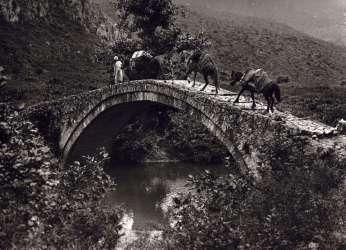 033 - Κεραμίτσα Θεσπρωτίας 1913