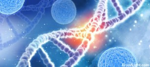 dna activation 2 eraoflightdotcom