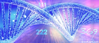dna activations numbers eraoflightdotcom