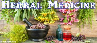 herbal medicine eraoflightdotcom
