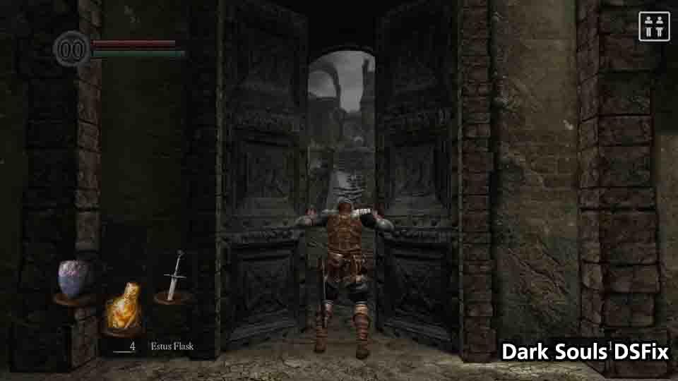DS Door