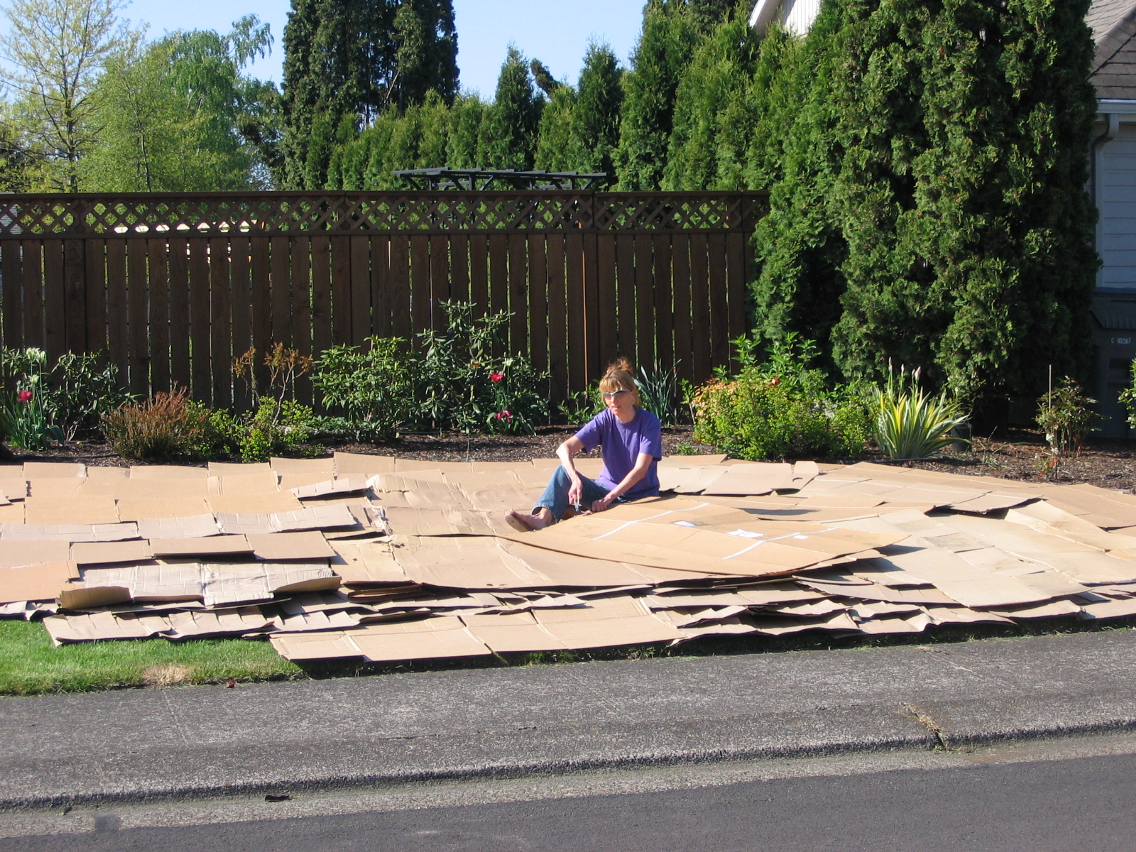 Covering lawn with a layer of flattened cardboard boxes