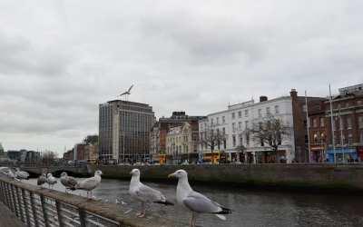 Última movilidad a Irlanda del proyecto KA101