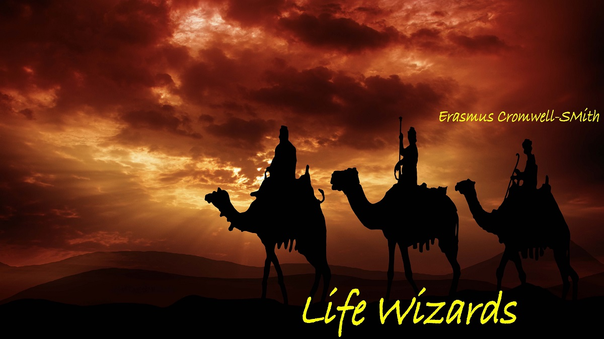 Life Wizards