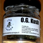 barattolo di vetro di OG Kush light
