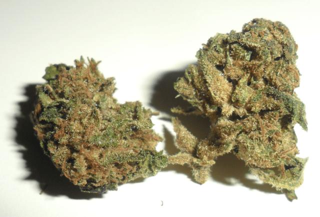 Fiore di canapa legale fruit spirit di Erbula