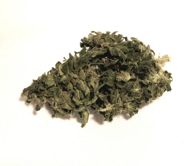 cima di canapa ok weed