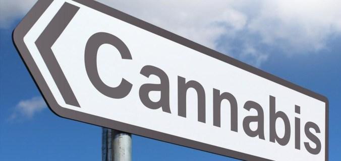 cartello cannabis offerte lavoro