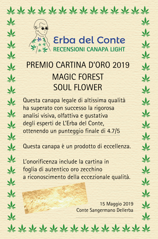 certificato eccellenza magic forest