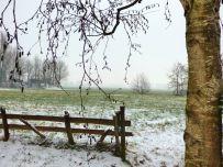 Winter 2017 - Sneeuw in Noordhorn (3)