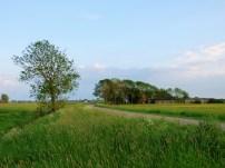 Spanjaardsdijk - Zuidhorn (5)