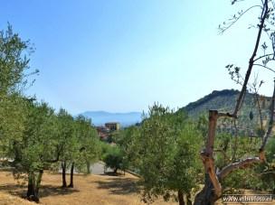 Carmignano - Toscane (15)