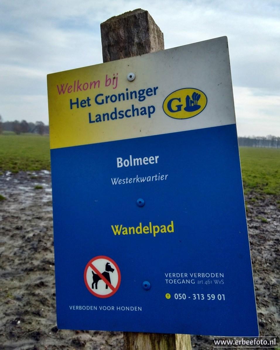 Bolmeer - Nanninga Bos 12