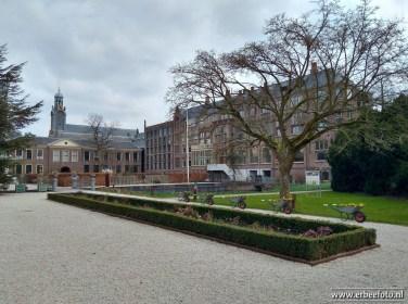 Leiden - Hortus 19