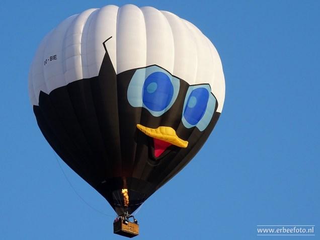 Ballon_Fiesta_Meerstad_2018_050