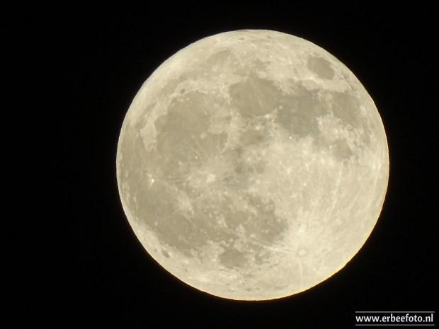 Volle Maan, Noordhorn
