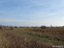 201902_uitzichtheuvel babbelaar lauwersmeer 07