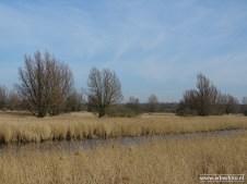 201902_uitzichtheuvel babbelaar lauwersmeer 08