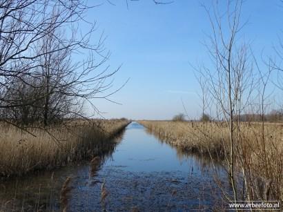 201902_uitzichtheuvel babbelaar lauwersmeer 10
