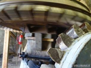 erbeefoto_westerhornermolen grijpskerk 08