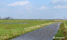 Landschap bij Fransum, Zuidhorn