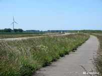 De Kollumerwaard, landschap en windmolen