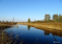 Vogelkijkhut de Baak Lauwersmeer