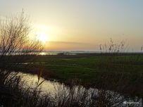 Vogelkijkhut Jaap Deensgat Lauwersmeer