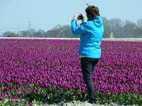 Laura maakt foto's van de Bollenvelden op het Hogeland
