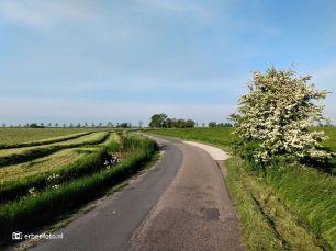 Jensemaweg (Barnwerd)
