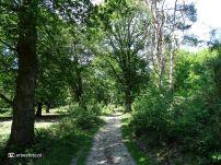 Nationaal Park Veluwezoom 02
